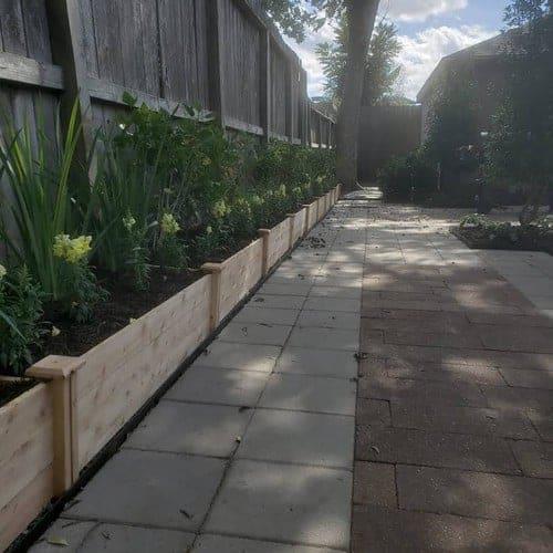 professional installed landscape installation by Helms Landscape