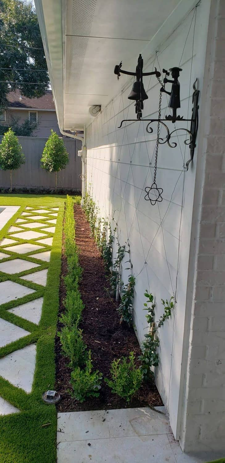 side yard display set perfectly with vines and shrubs